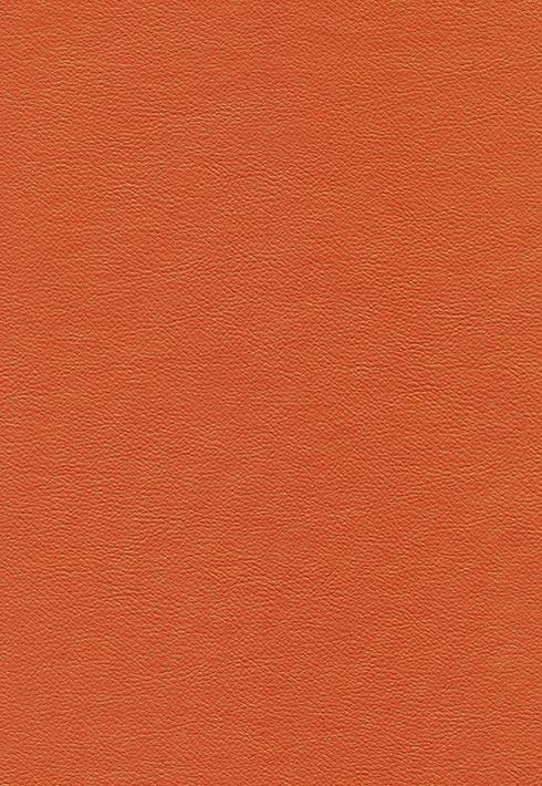 Peru 209 Orange