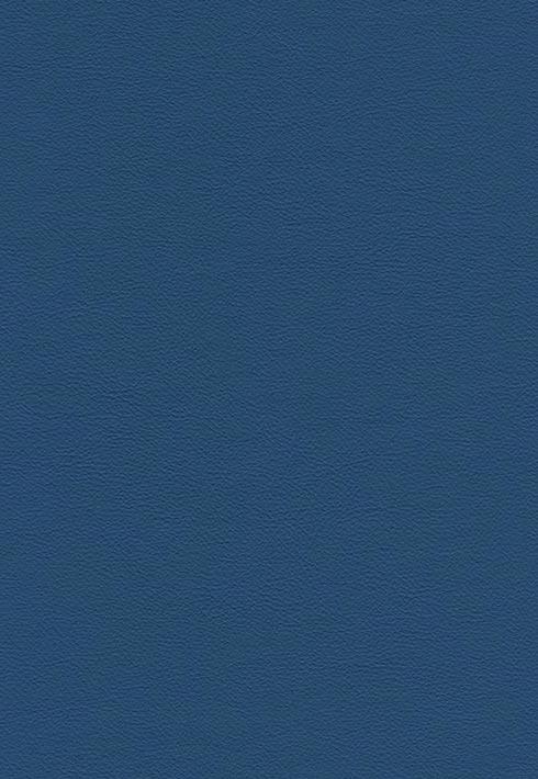 Peru 215 Taubenblau