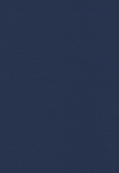 Peru 216 Marineblau